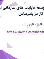 استخدام مدیر توسعه قابلیت های سازمانی از 11 استان جهت کار در بندرعباس