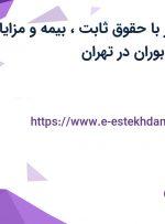 استخدام ویزیتور با حقوق ثابت، بیمه و مزایا در شرکت تهران بوران در تهران