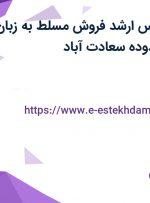 استخدام کارشناس ارشد فروش مسلط به زبان انگلیسی در محدوده سعادت آباد