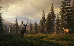بازی Call of the Wild؛ به دور از وحشیبازی