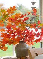با این ایدهها پاییز را به خانه بیاورید