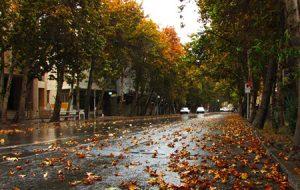 ترینهای تهران یا تمام اِفادههای یک پایتخت