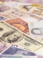 کاهش نرخ ۳۳ ارز بانکی/ قیمت یورو و پوند افزایش یافت