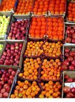 نارنگی 28هزار تومان و موز 47 هزار تومان شد/ قیمت انواع میوه در میدان تره بار