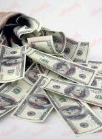 دلار بلاتکلیف در دعوای برجامی دولت و مجـلس