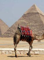 حقایق جالب در مورد اهرام مصر