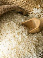 معاملات گواهی سپرده برنج طارم آغاز شد
