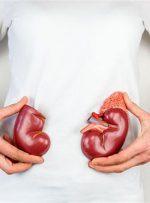 علل، علایم و راههای درمان نارسایی کلیه