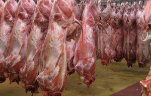 هشدار درباره مصرف گوشت قربانی و احتمال بروز تب کریمه کنگو