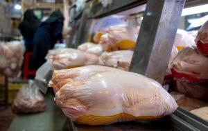 بررسی احتمال قیمتهای نجومی برای بازار مرغ/ رسیدن مرغ به ۱۰۰ هزار تومان واقعیت دارد؟