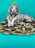 نقد فیلم The White Tiger – او را زاغه نشین صدا نکنید