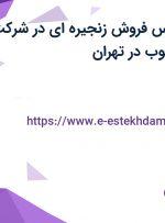 استخدام کارشناس فروش زنجیره ای در شرکت نگین صنعتی جنوب در تهران