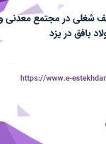 استخدام 21 ردیف شغلی در مجتمع معدنی و صنعت آهن و فولاد بافق در یزد