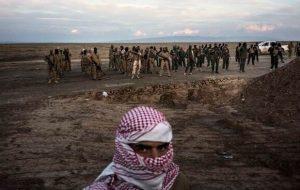ماه عسل طالبان و القاعده نزدیک است؟