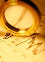 تأمین مالی بلند مدت و با مبالغ بالا برای شرکتها / ریسک زیان به شرکت سرمایهگذاری برمیگردد