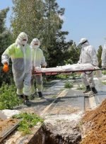 مرگ و میر کرونا در تهران سه رقمی شد