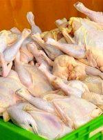 پیش بینی وضعیت بازار مرغ در روزهای آینده
