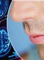 چگونه حس بویایی را بعد از بیماریهای ویروسی برگردانیم؟
