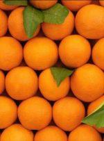 سندرم پوست پرتقال چیست؟/ علائم و راهکارها
