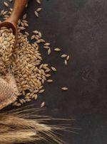 لیست غذاهایی که حساسیت زا هستند