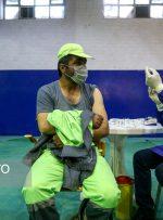 مرحله دوم واکسیناسیون پاکبانان همدان