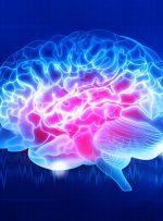 ثبت خاطرات جدید موجب افزایش اسیدهای چرب اشباع در مغز میشود