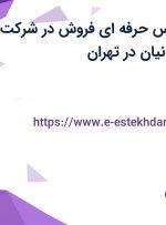 استخدام کارشناس حرفه ای فروش در شرکت آشیان یزدان ایرانیان در تهران