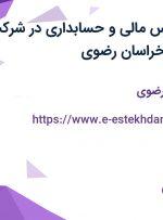 استخدام کارشناس مالی و حسابداری در شرکت نوین زعفران در خراسان رضوی