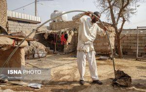 ایسنا – حضور نیروهای دامپزشکی خوزستان در مناطق درگیر تنش آبی