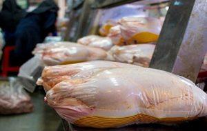 روند صعودی قیمت مرغ تا کجا ادامه دارد؟
