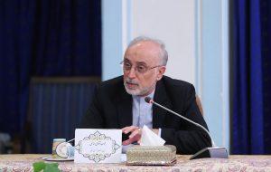 صالحی: سازمان انرژی اتمی حداکثر هوشمندی را در برجام داشت