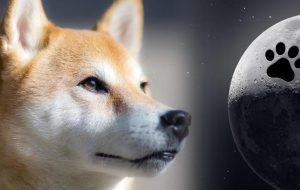 سقوط چهارپایه Dogecoin-DOGE در ماه گذشته 18 درصد سقوط کرد و به رتبه نهم سقوط کرد-به روز رسانی بازار اخبار بیت کوین