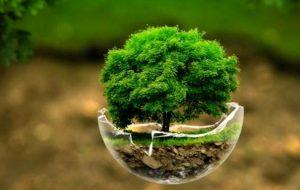 از هیدروژن سبز چه می دانیم؟