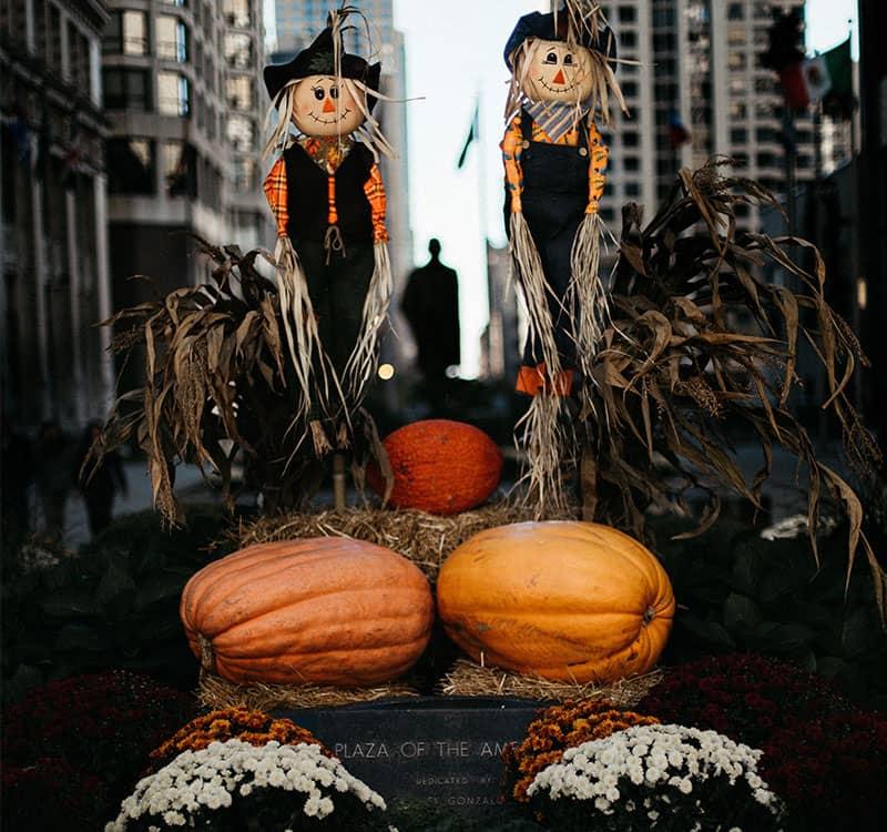 دو مترسک با تعدادی کدو تنبل در مراسم هالووین