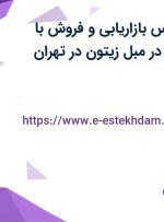 استخدام کارشناس بازاریابی و فروش با پورسانت فروش در مبل زیتون در تهران